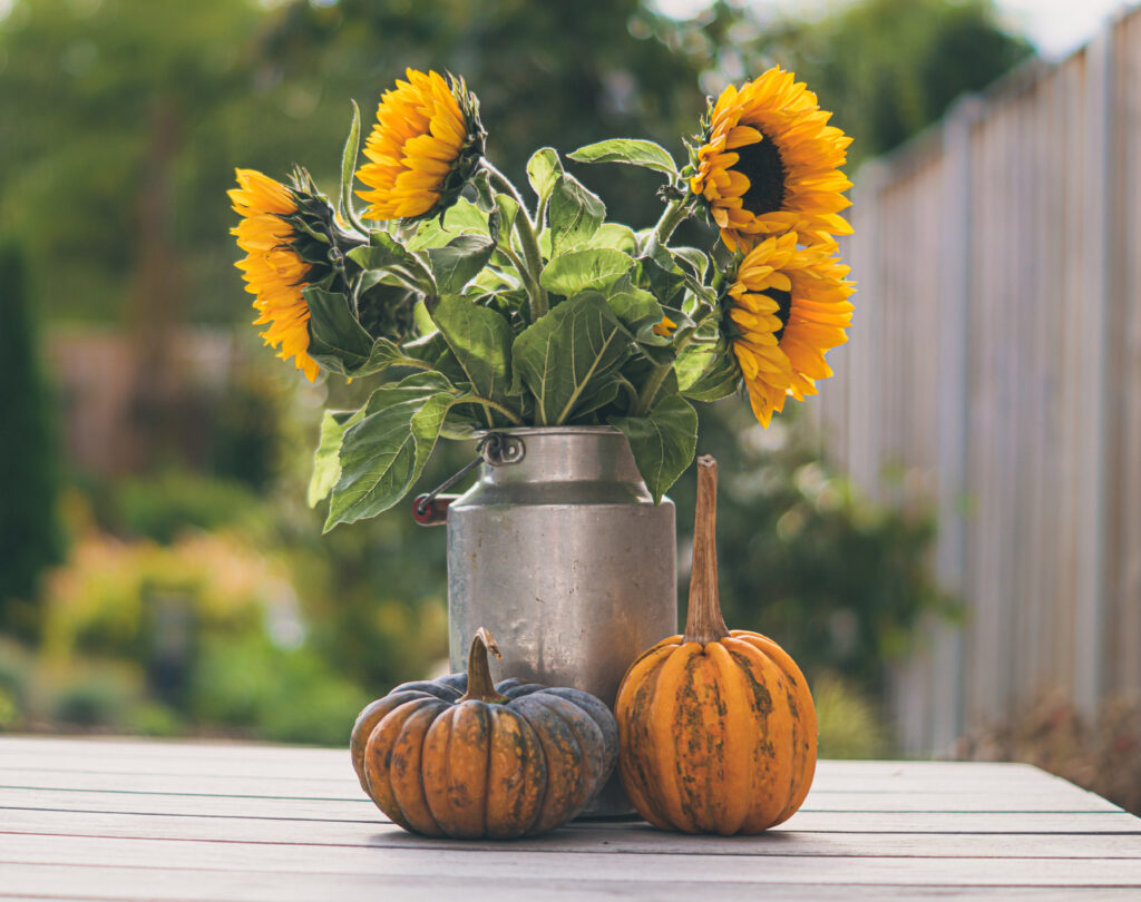 affordable fall home decor, there's sugar in my tea, charlotte nc blogger